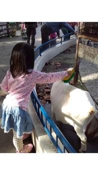 HI3H09350001 動物園.jpg